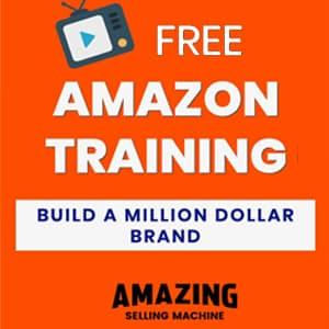 Amazing Selling Machine Free Training